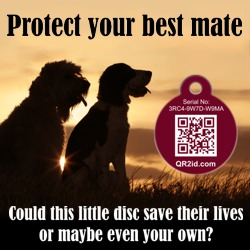 Protect your best mate